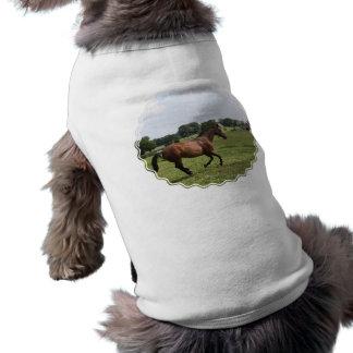 Galloping Thoroughbred Pet Shirt
