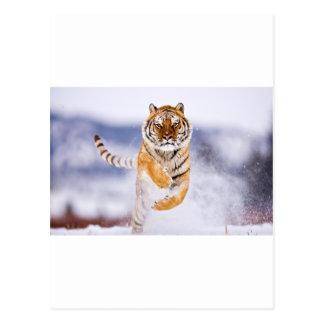 Galloping Tiger Postcard