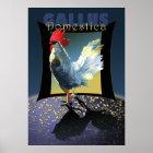 Gallus Domestica Poster