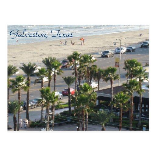 Galveston, Texas Postcard-3