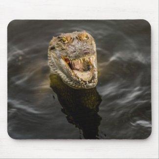 Gambia Crocodile Mouse Pad