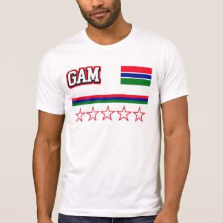 Gambia Flag T-Shirt