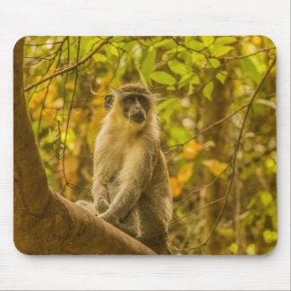 Gambia Monkey Mouse Pad