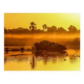 Gambia Sunrise Postcard