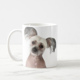 Gambit (chinese crested) - Photo Mug