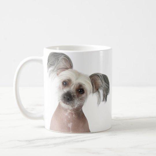 Gambit (chinese crested) - Photo Mug