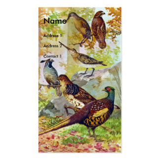 Game Birds Pack Of Standard Business Cards