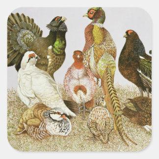 Game Birds Square Sticker