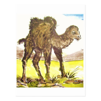 Game camel, game Camel * animal art * Animal ARTca Post Card
