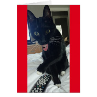 game invitation  remote cat funny greeting card