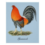 Gamecock Blue Red Rooster Poster