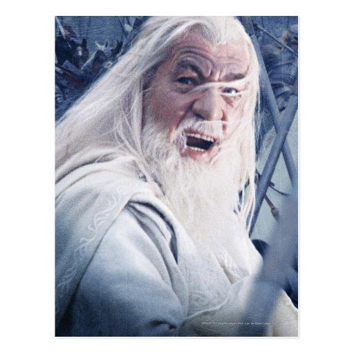 Gandalf In Battle Post Card