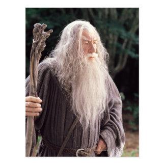 Gandalf Standing Postcard