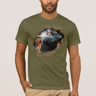 Gandalf You Shall Not Pass T-Shirt