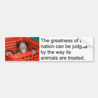 Gandhi Animal Quote Cute Baby Bumper Sticker