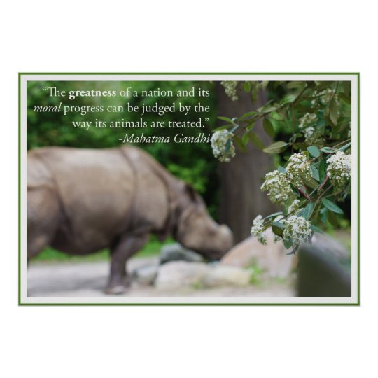 Gandhi Quote, Treat the Animals Well Poster