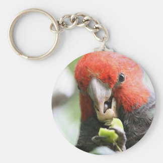 Gang Gang Parrot keychain