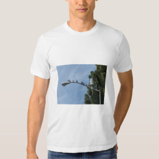Gang Of Eight Pigeons Sitting On The Lamp Post Nea Tee Shirts