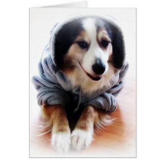 Gangsta Dog Wearing Hoodie Greeting Card