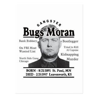 Gangster Bugs Moran Postcard