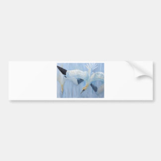 Gannets diving unique gifts for you bumper sticker