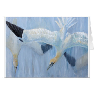 Gannets diving unique gifts for you card