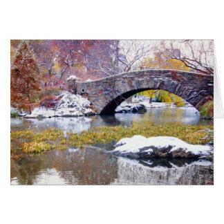 Gapstow Bridge - Central Park, New York City Greeting Card