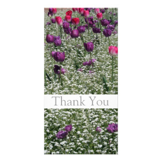 Garden 1 - Tulips - Thank You Photo Cards -1-