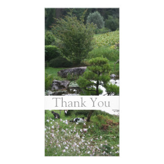 Garden 3 with Cats - Thank You Photo Cards -1-