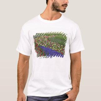 Garden design of Grape Hyacinth, and tulips, T-Shirt