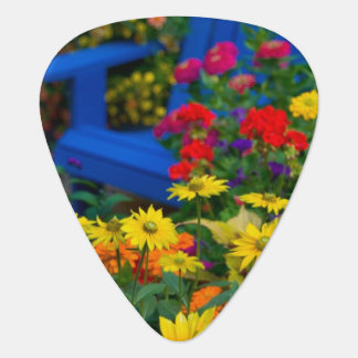 Garden designs in our Garden Sammamish, 3 Guitar Pick