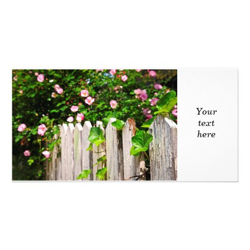 Garden fence with roses customized photo card