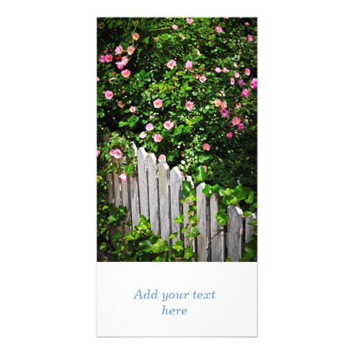 Garden fence with roses personalized photo card