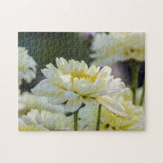Garden Flowers Photo Puzzle