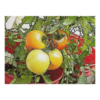 Garden Fresh Heirloom Tomatoes Poster