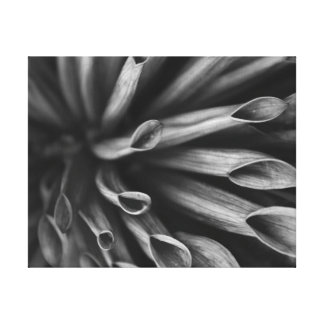 Garden in mono stretched canvas print
