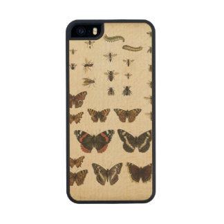 Garden Insects by Vision Studio Carved® Maple iPhone 5 Slim Case