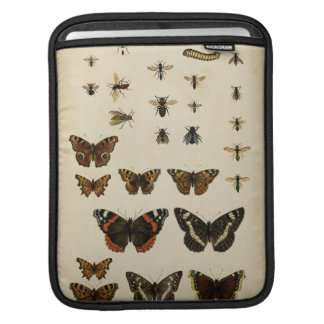 Garden Insects by Vision Studio iPad Sleeve