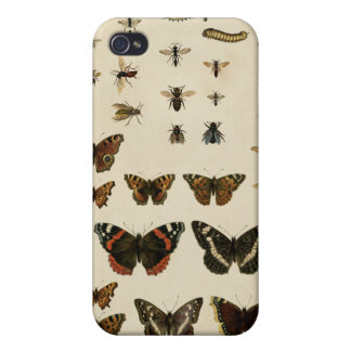 Garden Insects by Vision Studio iPhone 4 Case