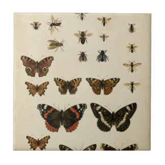 Garden Insects by Vision Studio Tile