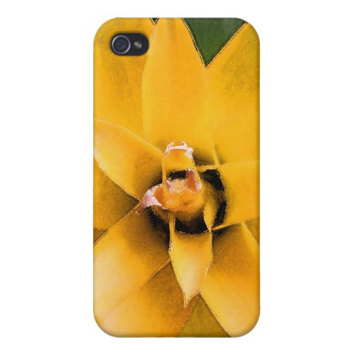 Garden leafy plant yellow leaves, iPhone 4 cover