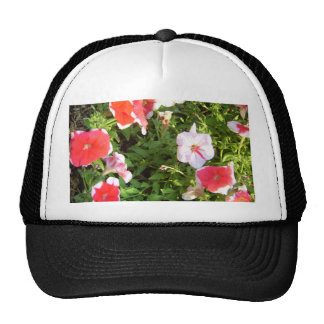 Garden of Colors CricketDiane Art & Photography Hats