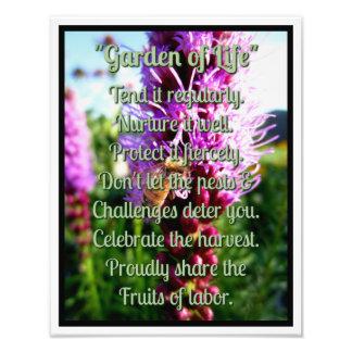 """""""Garden of Life"""" Liatris Bloom Bee Rocky Mountains Photograph"""