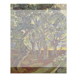 Garden of Saint Paul's Hospital Vincent Van Gogh Flyer