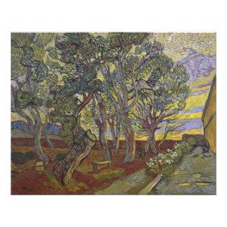 Garden of Saint Paul's Hospital Vincent Van Gogh Art Photo