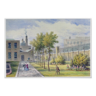 Garden of St. Thomas's Hospital Poster