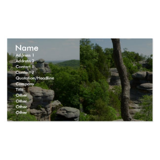 Garden Of The Gods-Southern Illinois. Stereographi Pack Of Standard Business Cards
