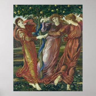 Garden of the Hesperides, 1869-73 Poster