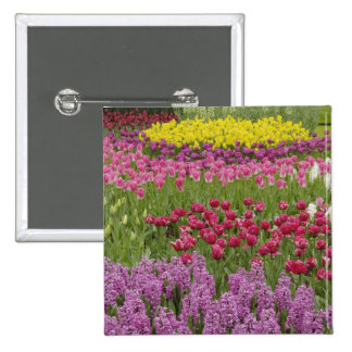 Garden of tulips, daffodils, and hyacinth 15 cm square badge