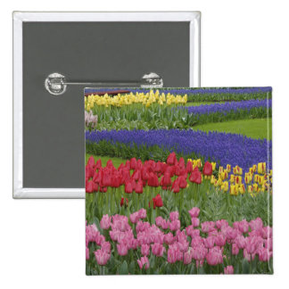 Garden of tulips, Grape Hyacinth and 15 Cm Square Badge